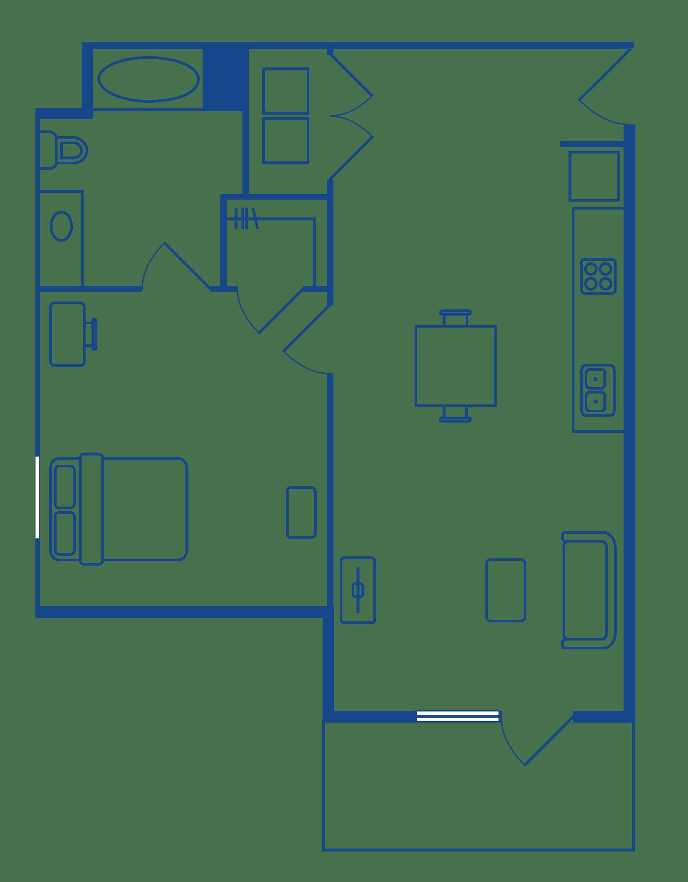 1 Bedroom 1 Bath Apartments For Rent Chapel Hill NC